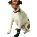 دستکش طبی سگ سایز مدیوم