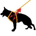 قلاده ضد حساسیت و ضد UV برای سگ ها فرپلاست