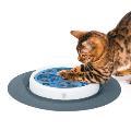 اسکرچر فکری همراه با علف گربه