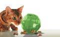 اسباب بازی فکری شکل توپ برای گربه ها