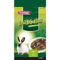 غذای مخصوص خرگوش