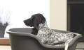 جای خواب MODERNA Domus برای سگ های 2 تا 80 کیلوگرم