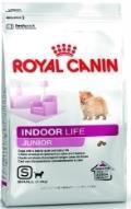 غذای خشک سگ های کوچک خانگی برای زندگی در خانه سگ های بالغ