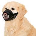 پوزه بند برای سگ ها در سایز ها مختلف