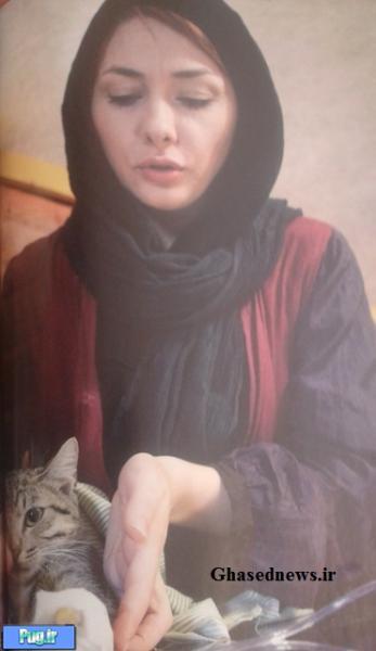 هانیه توسلی و گربه اش