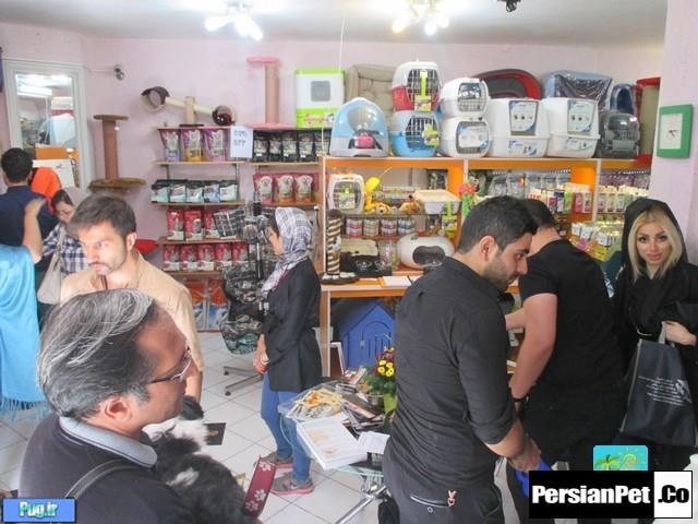 عکس  های جشنواره پرشین پت (مرسی کلی )