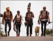 سگ ولگرد در مسابقات پیاده روی استقامت