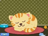 رشد بچه گربه ها