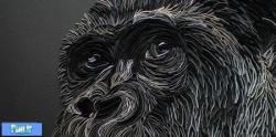 طرح های سه بعدی از حیوانات