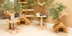 خانه ای برای گربه من